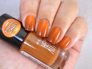 Essence - Meet my pumpkin in transition