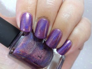 ILNP - Kings & queens